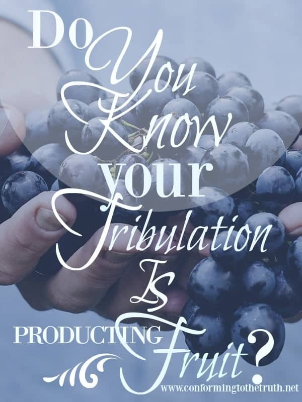 Are You Praising God For Your Tribulation?