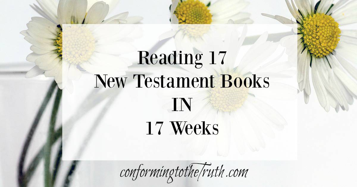 17-new-testament-books