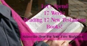 17-week-reading-plan