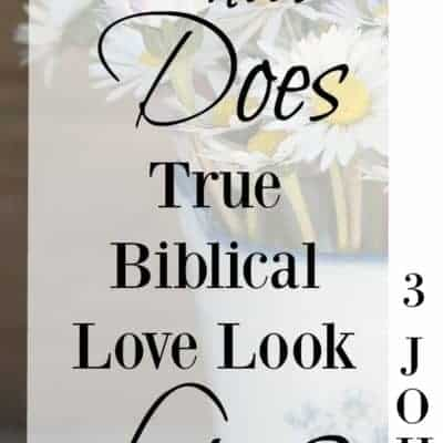 Love Rejoices With the Truth| Reading 3 John Week ~16