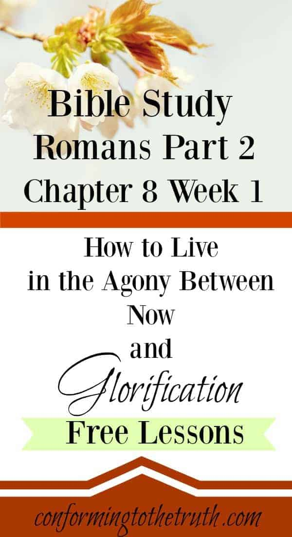 Do you find it hard to live in the agony of still fighting sin? Well hang on because glorification is coming! Join me as we do a Bible Study through the last 9 chapters of Romans. There is hope around every corner.