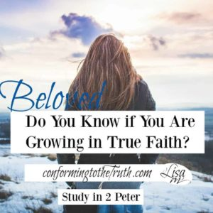 Do you know if you are growing in true faith? There is a way that seems right but its end is destruction.