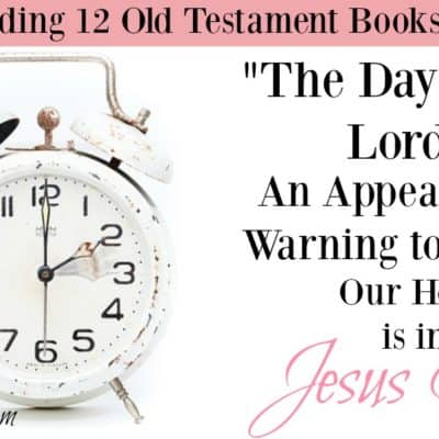 The day of the LORD is near and it will come as destruction from the Almighty. The book of Joel is an appeal and a warning to repent.