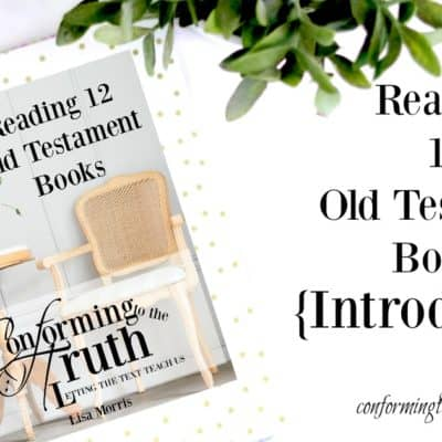 Reading 12 Old Testament books in 12 weeks. Let's do Bible Study together.