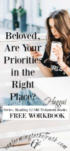 Are your priorities in the right place? Haggai gives the consequences for unordered priorites and the blessings which come when they are orded correctly.